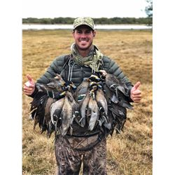 Argentina: 5 Day 6 Night High Volume Duck & Dove Hunt for 3 Hunters