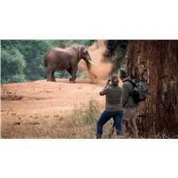 South Africa: 4 Day Kruger National Park Photo and Sightseeing Safari for 2