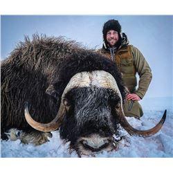 Raffle:  Alaska Governors Nunivak Island Muskox Permit, Includes $5,000,hunting lic.