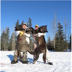 *Alberta – 6 Day – Wolf Hunt for One Hunter