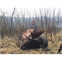 British Columbia – 12 -Day- Canada Moose Hunt for One Hunter