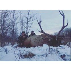 *Alberta - 8 Day – Elk Hunt for One Hunter