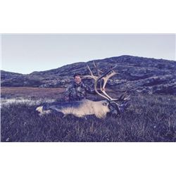 Greenland – 4 Day/5 Night – Reindeer or Caribou Hunt for Two Hunters