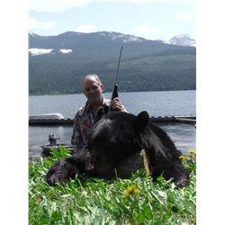 British Columbia - 6 Day- Black Bear Hunt for One Hunter