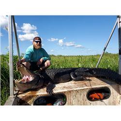 Louisiana Alligator Hunt: