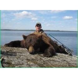 5 Day Black Bear Hunt