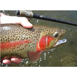 Montana Fly Fishing Trip for Two: