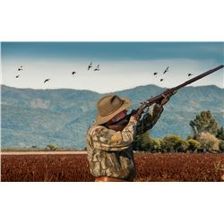 Argentina Dove Hunt for Six Hunters
