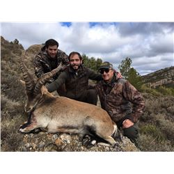 Management Beceite Ibex in Spain for 1 Hunter - $3,500