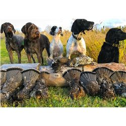 Duck, Geese and Grouse Combo Hunt for 1 Hunter - $2,000