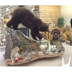 Taxidermy Gift Certificate - $2,000 / Exhibitor