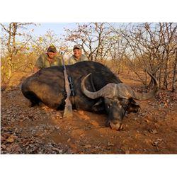 7 Day Adventurous African Hunting Safari for Cape Buffalo - $13,000 / Exhibitor