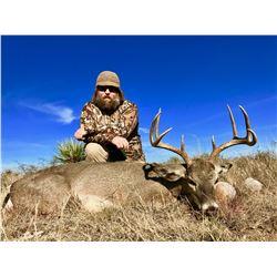 Mexico Carmen Mountain Deer - $5,500