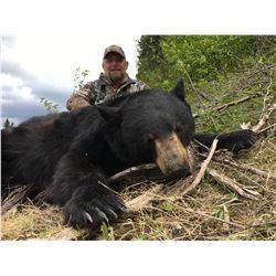 British Columbia Spring Black Bear for 2 Hunters - $4,500 / Exhibitor