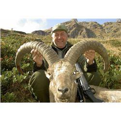 Western Caucasian (Kuban) Tur Hunt