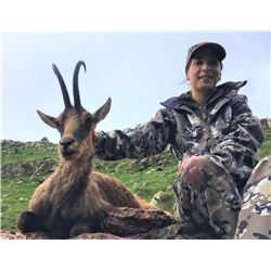 Pyrenean Chamois Hunt-includes trophy fee