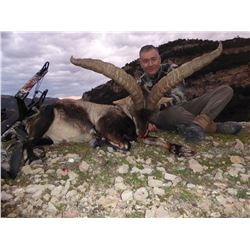 Beceite Ibex for Two Hunters - Includes Trophy Fees