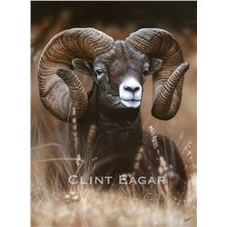 2020 SCI Artist of the Year-Mountain Ram-the new World Record-Signed Limited Edition