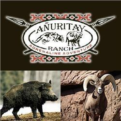 Argentina Wild Boar, Multi-Horned Ram and Goat for 2 Hunters