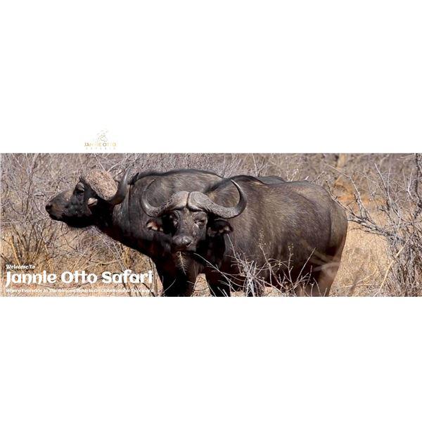 LA21-07 - Spiral Horn Hunt, South Africa