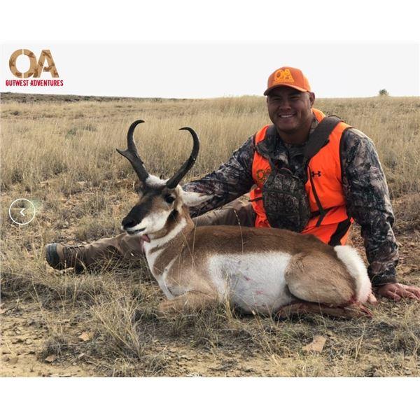 LA21-08 - Colorado Pronghorn Antelope Hunt