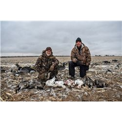 CANADIAN AND SNOW GOOSE IN COLORADO FOR TWO (2) HUNTERS