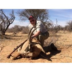 Namibia - Jan Oelofse Hunting Safaris – Gemsbok, Blue Wildebeest, Springbok, Warthog, Impala, adult