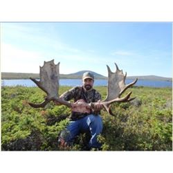 Newfoundland – Efford's Hunting - Moose Hunt