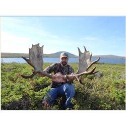 Newfoundland – Efford's Hunting - Moose Hunt
