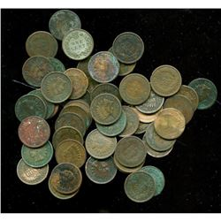 (50) Indian Head Cents - Random Date and Grade