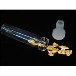 1 Gram Alluvial Natural Gold Nuggets in Vial
