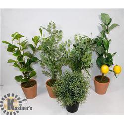 BOX OF NEW SILK PLANTS.