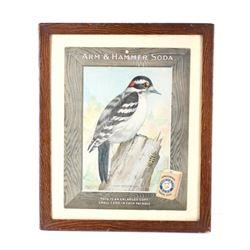 Arm & Hammer Soda Downy Woodpecker c. 1915