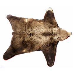 Trophy Alaskan Kodiak Brown Bear Rug