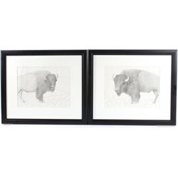 Signed Pair of Framed Buffalo Sketches