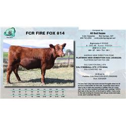 Lot - 6 - FCR FIRE FOX 814