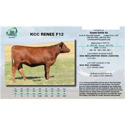 Lot - 30 - KCC RENEE F12