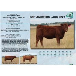 Lot - 31 - KRP ANSWERS LASS 9227