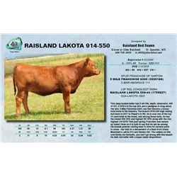 Lot - 43 - RAISLAND LAKOTA 914-550
