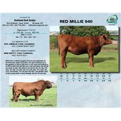 Lot - 45 - RED MILLIE 940