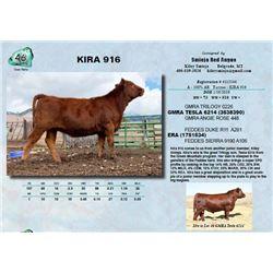 KIRA 916