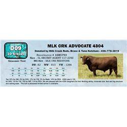 Lot - 63 - MLK CRK ADVOCATE 4304