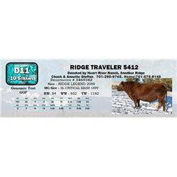 Lot - 65 - RIDGE TRAVELER 5412