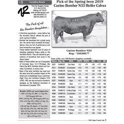 Lot - 3 - Pick of the Spring born 2019 Casino Bomber N33 Heifer Calves