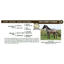 TDM LOWRY COWBOY