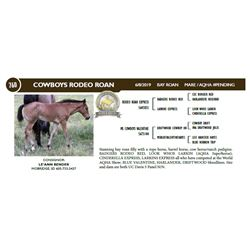 COWBOYS RODEO ROAN