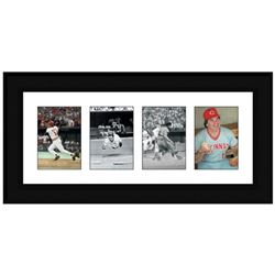 """""""Pete Rose Photo Series"""" Framed Set of Pete Rose Highlight Photographs. Includes Certificate of Auth"""