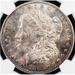 UNITED STATES: 1 dollar (26.73g), 1881. NGC MS63