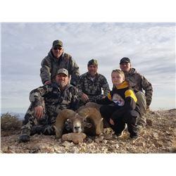 Nevada Heritage Desert Nelson Bighorn Sheep Tag