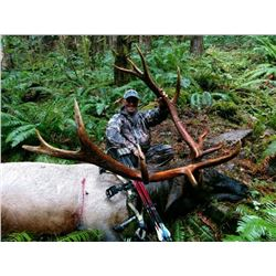 Washington Roosevelt Elk Hunt